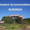 Welcome to Buronga